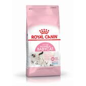 Сухой корм для котов Royal Canin Mother & Babycat